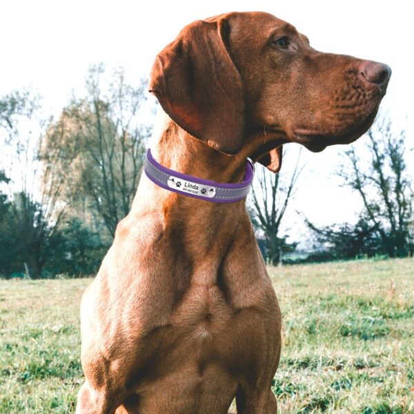 Adjustable Personalized Dog Collars PU Leather Reflective Dogs Cat Collar ID Custom Tag Engraved Pet Accessorie